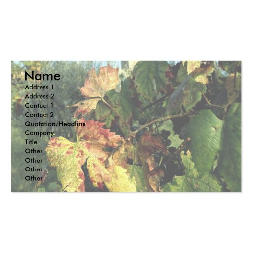 Grapevine, Tuscany, Italy Double-Sided Standard Business Cards (Pack Of 100)