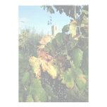 Grapevine, Tuscany, Italy Invite