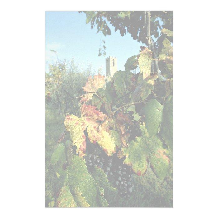 Grapevine, Tuscany, Italy Stationery