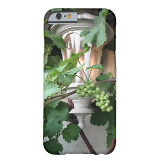 Grapevines And Lantern iPhone 6 Case