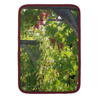 Grapevines at Villandry MacBook Air Sleeve
