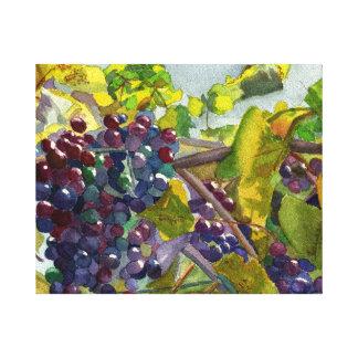 Grapevines Canvas Print