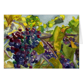 Grapevines Card