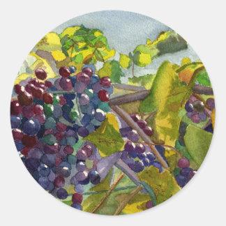 Grapevines Classic Round Sticker