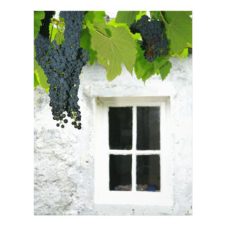 Grapevines Flyer