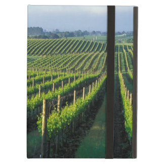 Grapevines in neat rows in California's Napa Case For iPad Air