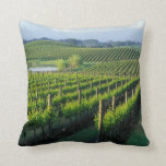 Grapevines in neat rows in California's Napa Pillows