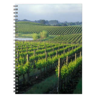 Grapevines in neat rows in California's Napa Spiral Notebook