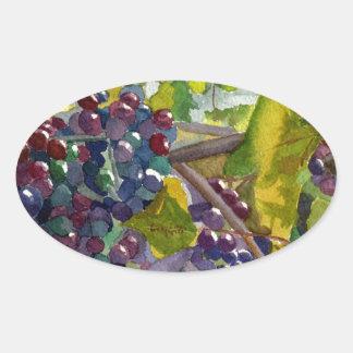 Grapevines Oval Sticker