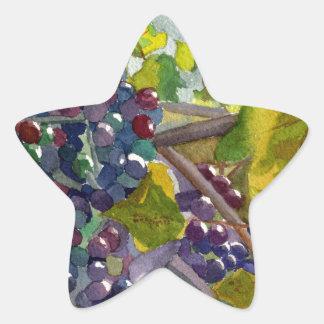 Grapevines Star Sticker