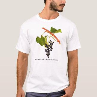 grapewear