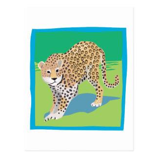 Graphic Leopard Postcard