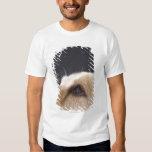 Graphic portrait of dog head, close-up shirt