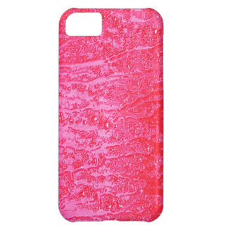 Graphite Abstract Antique Junk Style Fashion Art S iPhone 5C Cover