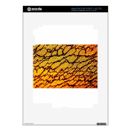 Graphite Abstract Antique Junk Style Fashion Art S Skin For iPad 3
