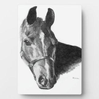 Graphite Horse Head Plaque