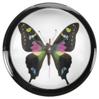 Graphium butterfly aquarium clock