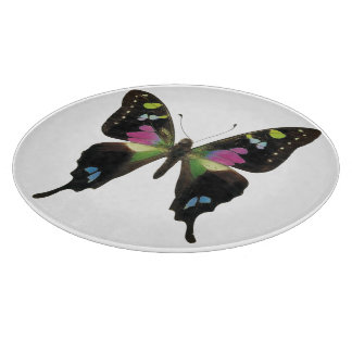 Graphium butterfly cutting boards