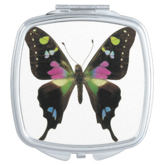 Graphium butterfly travel mirror
