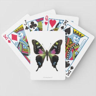Graphium butterfly card decks