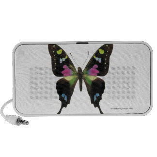 Graphium butterfly iPod speakers