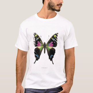 Graphium butterfly T-Shirt