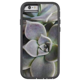 Graptopetalum paraguayense tough xtreme iPhone 6 case
