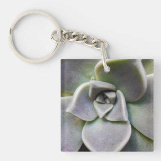 Graptopetalum paraguayense Double-Sided square acrylic keychain