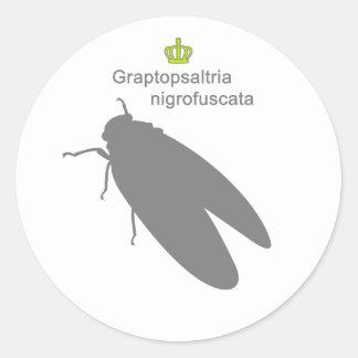 Graptopsaltria nigrofuscata g5 classic round sticker