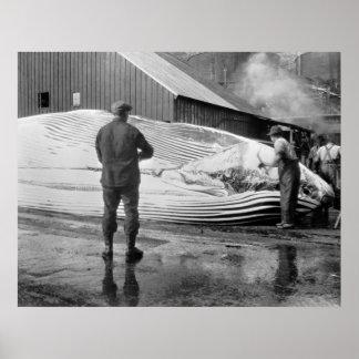 Grasa de ballena Busters, 1940 Posters