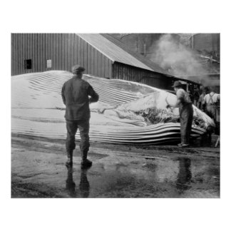 Grasa de ballena Busters, 1940 Póster