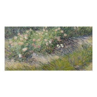 Grass and Butterflies by Vincent Van Gogh Card