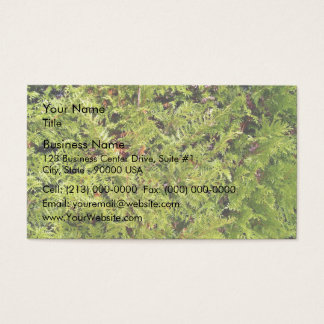 Grass And Hedges Business Card