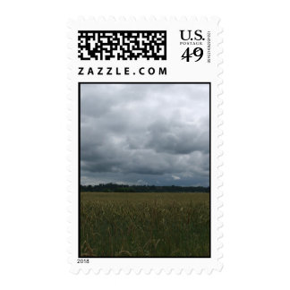 grass and sky postage