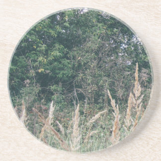 Grass And Trees Nature Pattern Photo Template Drink Coaster