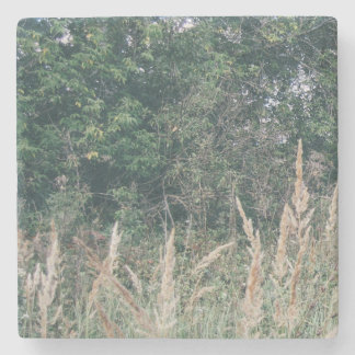 Grass And Trees Nature Pattern Photo Template Stone Coaster