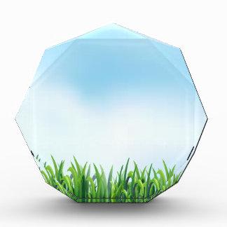 Grass Award
