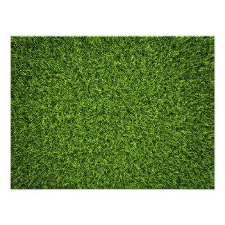 Grass Background Photo Print