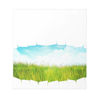 Grass background with ripped paper2 notepad