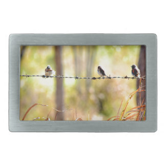 GRASS BIRD RURAL QUEENSLAND AUSTRALIA RECTANGULAR BELT BUCKLE
