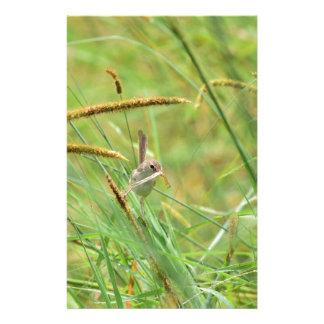GRASS BIRD RURAL QUEENSLAND AUSTRALIA STATIONERY