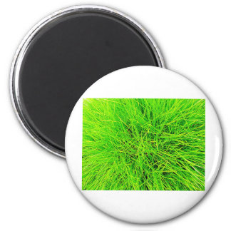 Grass Blades Nature Abstract Shapes Fashion style Magnet