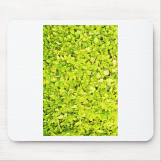 Grass Blades Nature Abstract Shapes Fashion style Mouse Pad
