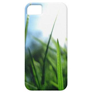 grass & blue sky iPhone SE/5/5s case
