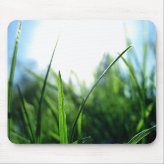 Grass & blue sky mouse pad