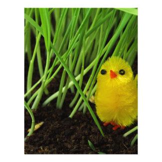 grass chick letterhead