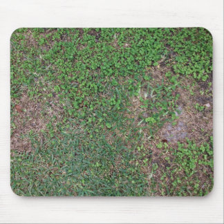 Grass, dirt, and dollar weed mouse pad