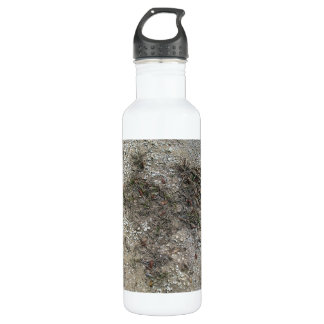 Grass Dry And Stony Ground Close Up 24oz Water Bottle