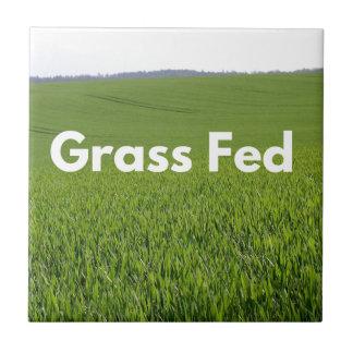 Grass Fed Ceramic Tile