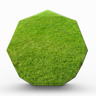 Grass field award